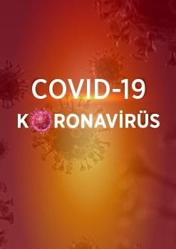 COVID-19 ile Mücadele: FIP Kılavuzları ve Bilgilendirme Dokümanları  (covid19.teb.org.tr)
